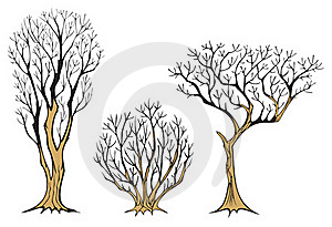 Withered Trees Stock Images - Image: 20135884