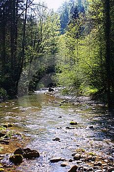 Water Stream Royalty Free Stock Photo - Image: 20137555