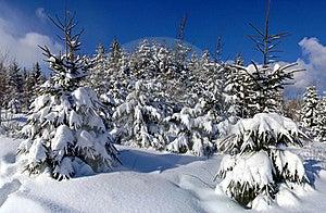 Mountain Landscape Stock Photography - Image: 20139332