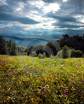 Landscape Stock Photos - Image: 20139453