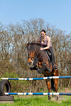 Equestrian - Horse Jumping Stock Photography - Image: 20141242