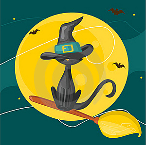 Cat On A Broom Royalty Free Stock Images - Image: 20144269