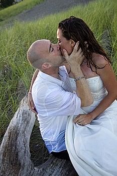 Love Stock Photos - Image: 20145363
