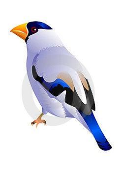 Birdy Royalty Free Stock Photos - Image: 20151728