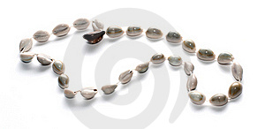 Beads Made Of Conches Isolated On White Background Stock Images - Image: 20162084