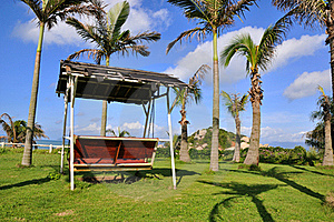 Palm Tree And Swing Royalty Free Stock Photo - Image: 20168315