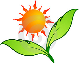 Sun Leaf Royalty Free Stock Images - Image: 20171479