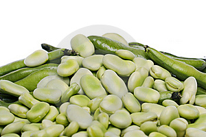 Broad Beans Stock Photo - Image: 20176720