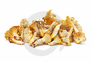Edible Mushrooms Royalty Free Stock Photography - Image: 20189267