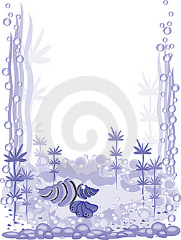 Aquarium Frame Stock Photo - Image: 20194830