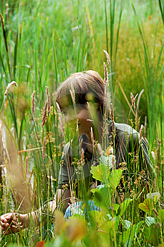 Hiding In The Field Royalty Free Stock Image - Image: 20195496