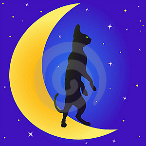 Cat On The Moon Royalty Free Stock Photos - Image: 20207298