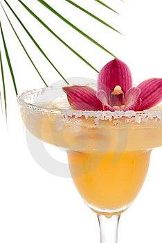 Margarita Cocktail Drink Stock Photo - Image: 20229100