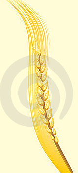 Wheat Ear On The Yellow Background Royalty Free Stock Images - Image: 20233479