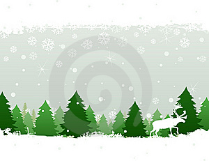 Winter Wood Stock Photography - Image: 20241172