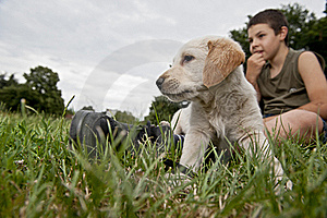 Boy With His Friend Stock Images - Image: 20247294
