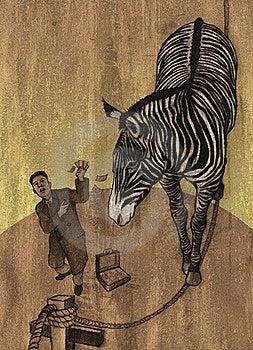 Zebra In Circus Stock Photography - Image: 20247932