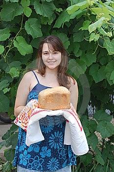 Bread Stock Photo - Image: 20255810