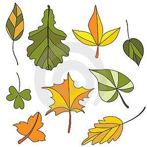 Autumn Leaf. Set Stock Image - Image: 20260491