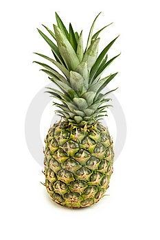 Pineapple Isolated On White Royalty Free Stock Image - Image: 20264866