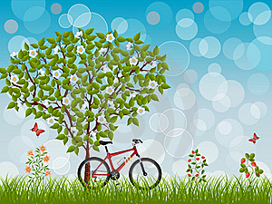 Summer Landscape With A Bike Royalty Free Stock Image - Image: 20267426