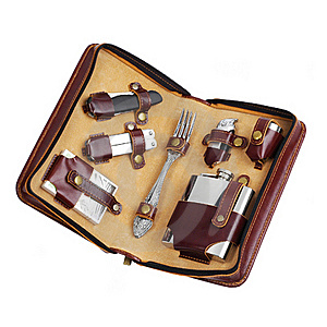 Luxury Travel Kit In Leather Case Stock Images - Image: 20274064