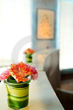 Beautiful Flower In Room Stock Images - Image: 20279614