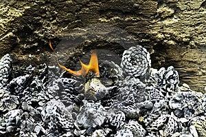 Burning Pine Cones Royalty Free Stock Photo - Image: 20293695