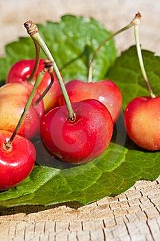 Cherries Royalty Free Stock Photo - Image: 20295875