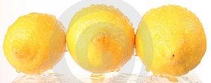 Fruit - Lemon Stock Images