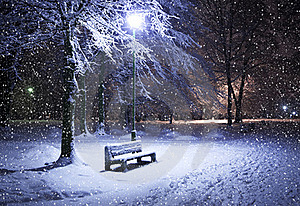 Winter Park At Night Royalty Free Stock Photo - Image: 20304295