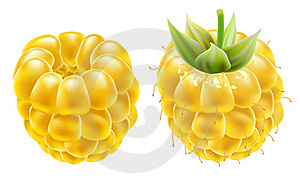 Yellow Ripe Raspberries On A White Background. Royalty Free Stock Image - Image: 20306066