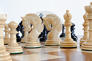 Chess Pieces On Wood Board Stock Photo - Image: 20308000