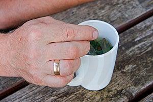Hand Elderly Men Stock Photography - Image: 20313702