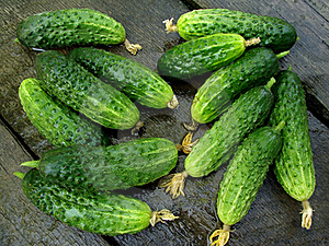 Cucumbers Stock Photography - Image: 20315542