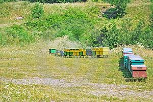 Bee Hive Royalty Free Stock Photo - Image: 20316745