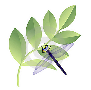 Dragonfly On Leaves Royalty Free Stock Photography - Image: 20321007