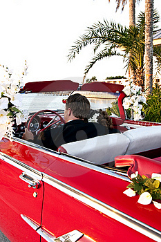 Tropical Destination Wedding Royalty Free Stock Photos - Image: 20331118