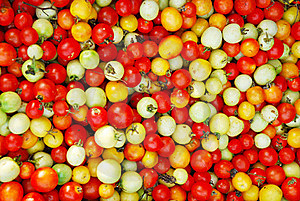 Color Of Tomato Royalty Free Stock Photography - Image: 20334877