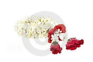 White Garland Festoon For Worship Buddha In Thaila Stock Images - Image: 20340124