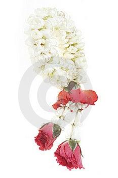 White Garland Festoon For Worship Buddha In Thaila Stock Images - Image: 20340134