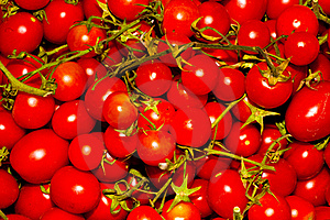 Red Tomato Stock Photography - Image: 20353772