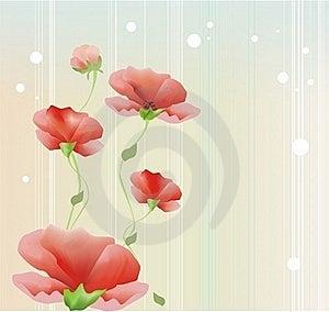 Poppies Royalty Free Stock Photo - Image: 20361345