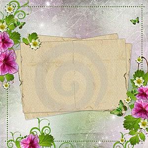 Congratulation Card Stock Image - Image: 20364671