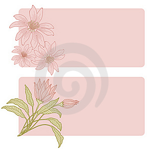 Greetings Cards. Royalty Free Stock Photography - Image: 20364777