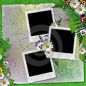 Frame For Three Photos With Colorful Flowers Stock Photography - Image: 20382832