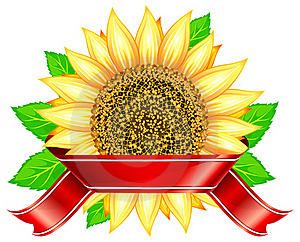 Sunflower & Ribbon Royalty Free Stock Photography - Image: 20385147