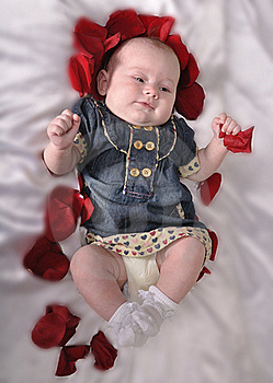Baby With An Entourage Of Red Petals Rose Royalty Free Stock Photos - Image: 20387038