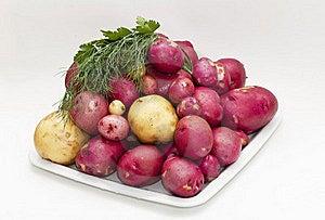 Potatoes Stock Photography - Image: 20415662