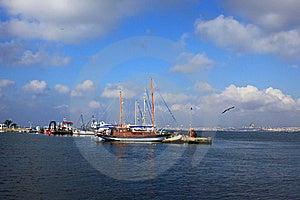 Sailboats Moored Royalty Free Stock Images - Image: 20417699